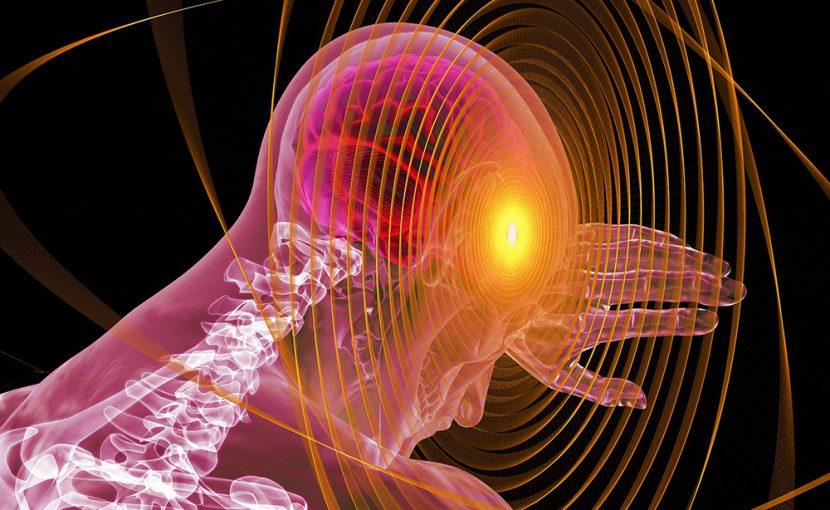 「不安」と「嫉妬」の脳回路