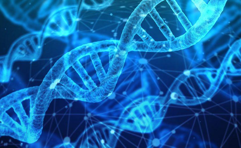 山中教授iPS細胞が変える未来の医療
